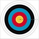 국제양궁과녁 127cm 사방펀칭 점수형 활쏘기 사냥